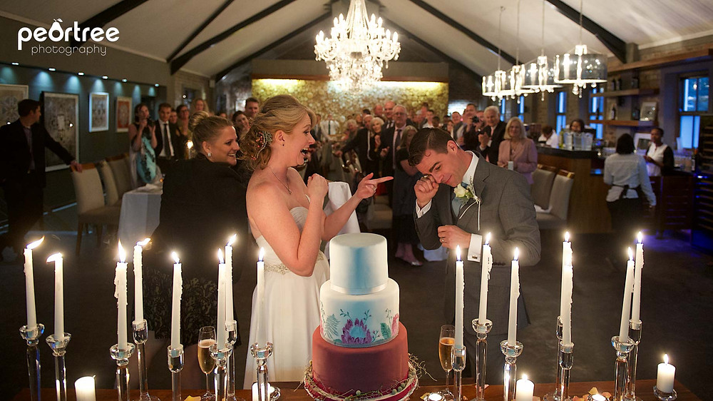 wedding franschhoek holdenmanz_72