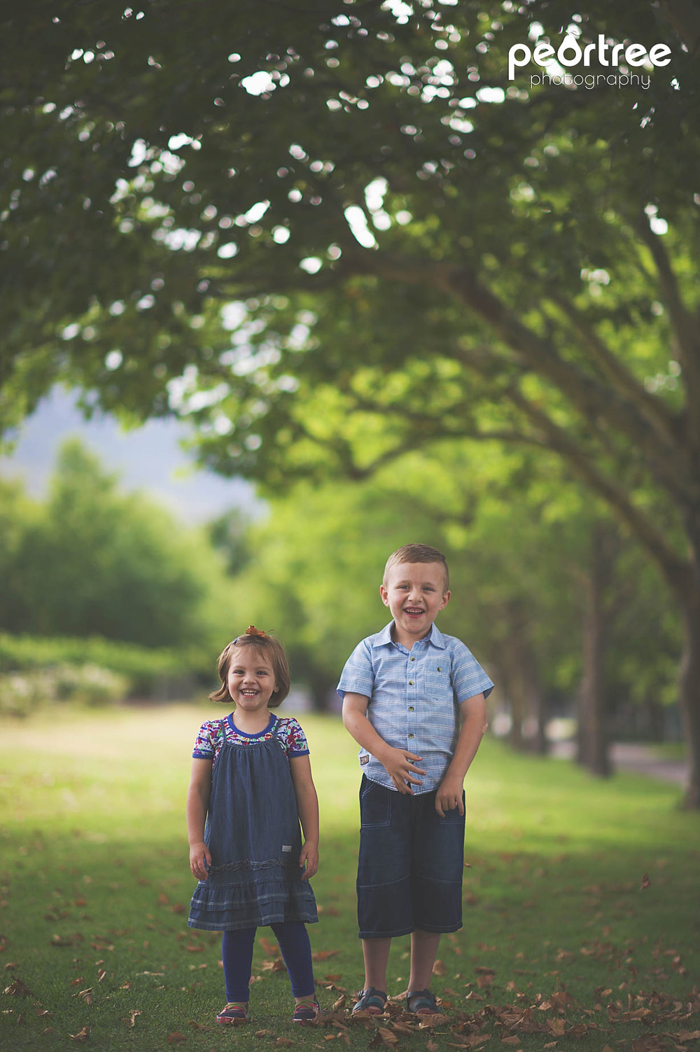 Professional Outdoor Family Portraiture
