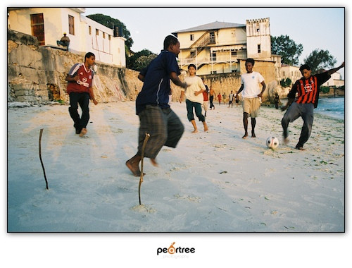 African Football Soccer World Cup 2010 (4)