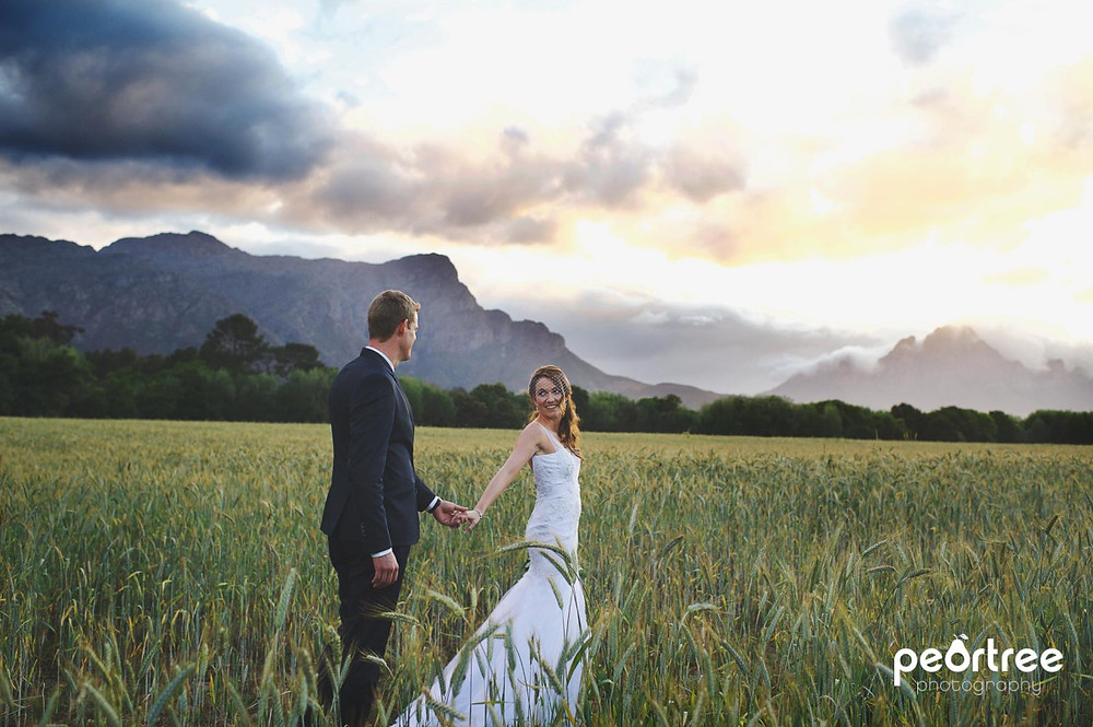 Dieu Donne Top Weddings_57