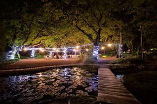 top stellenbosch wedding photographer