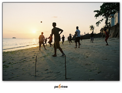 African Football Soccer World Cup 2010 (5)