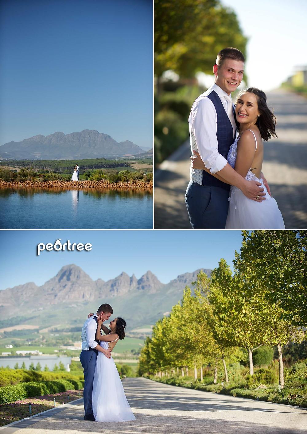 stellenbosch cavalli wedding