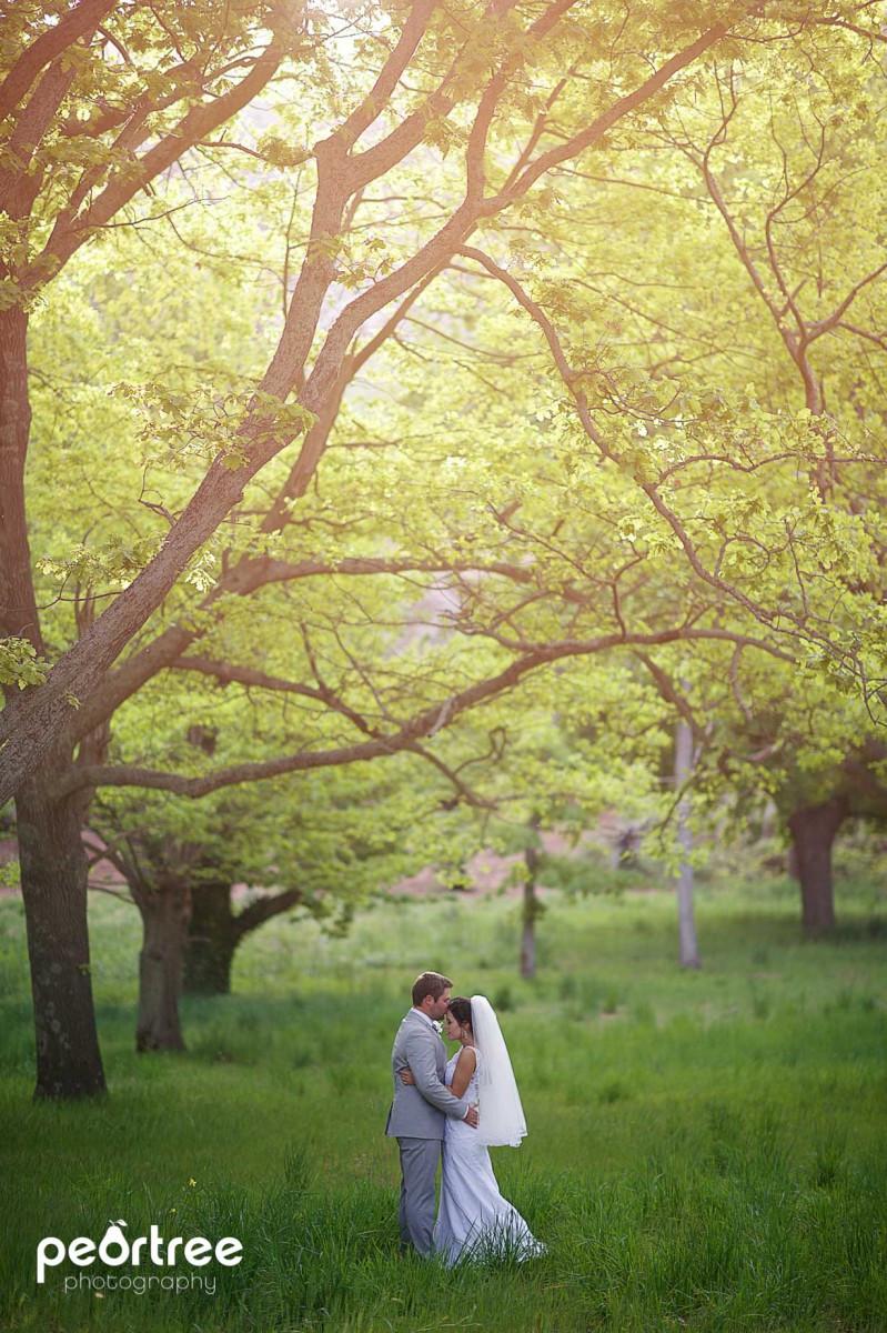 wedding-kaleo-farm_65