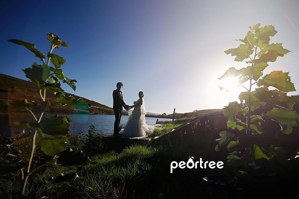 South Hill Vineyards Wedding