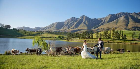 wedding photographer stellenbosch_15.jpg