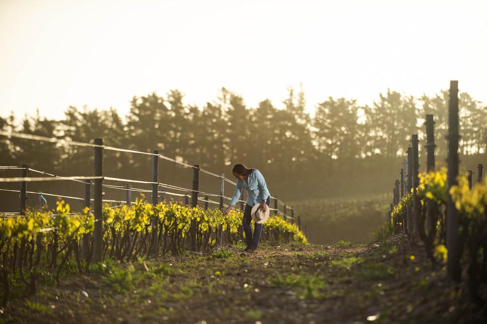 wine maker female photography.jpg