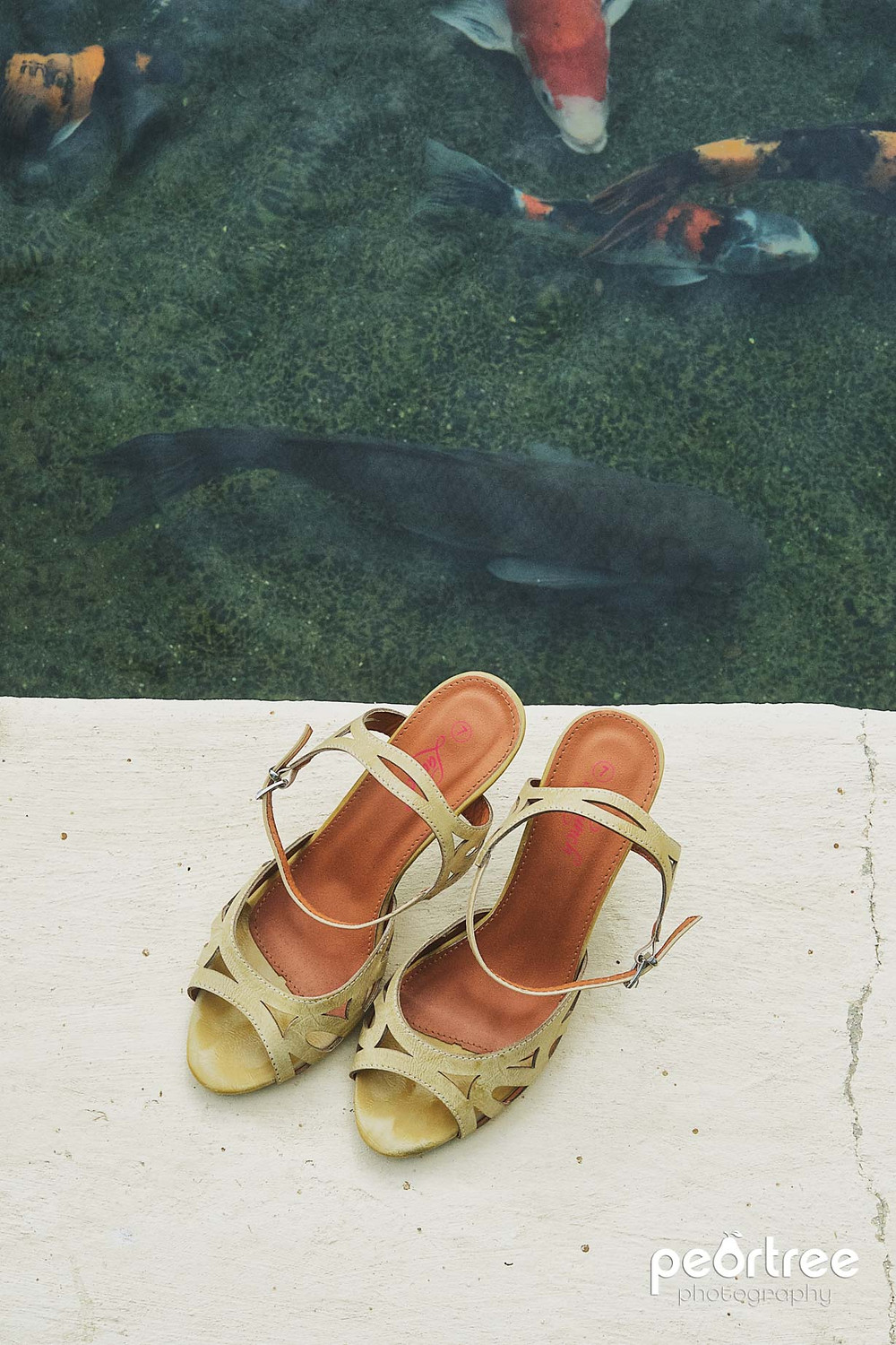 wedding shoes and koi fishes