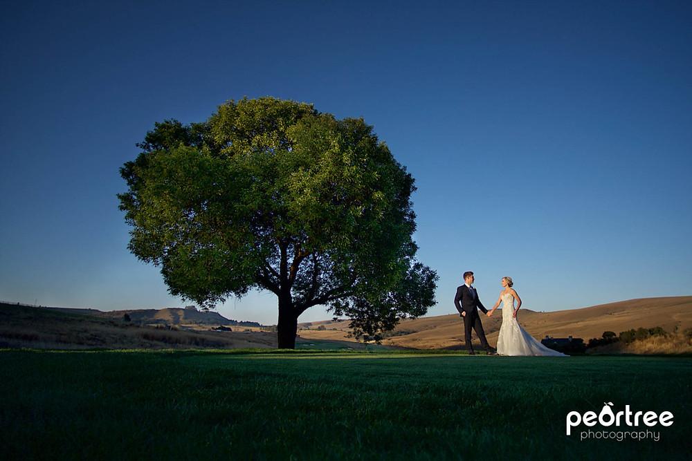 highlandgate-dullstroom-wedding_78