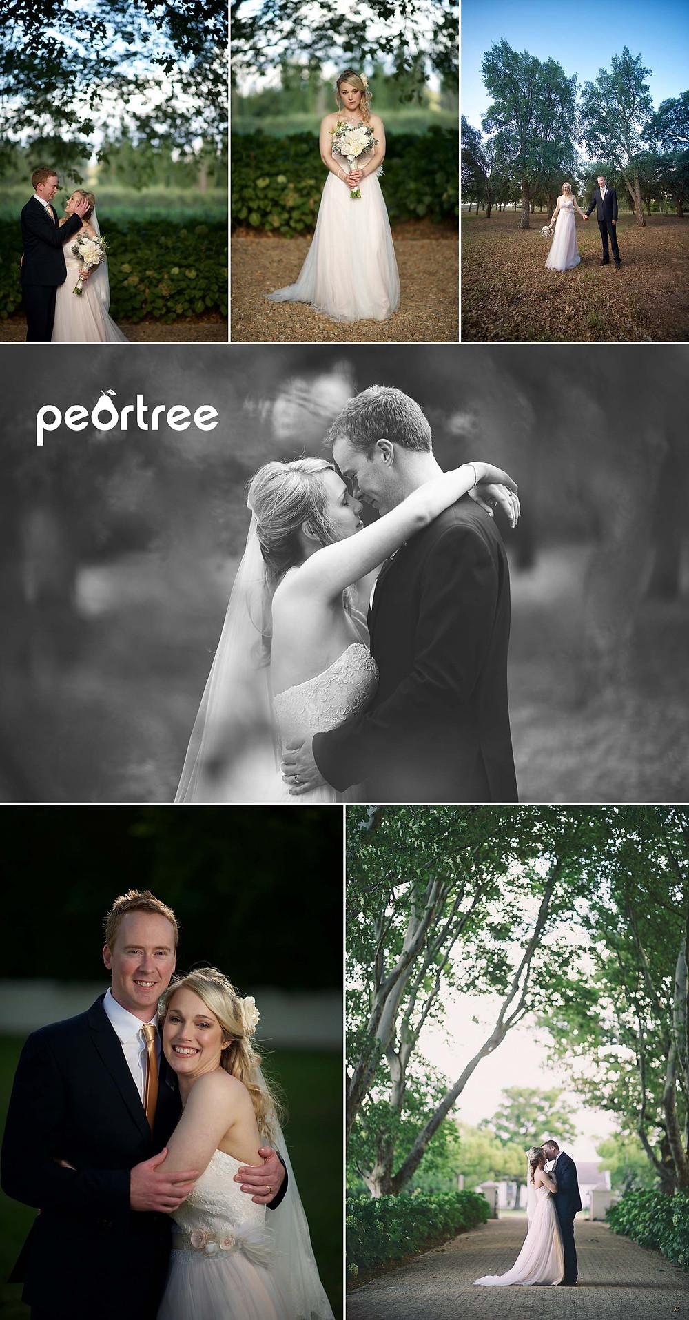 the olive press boschendal wedding 12