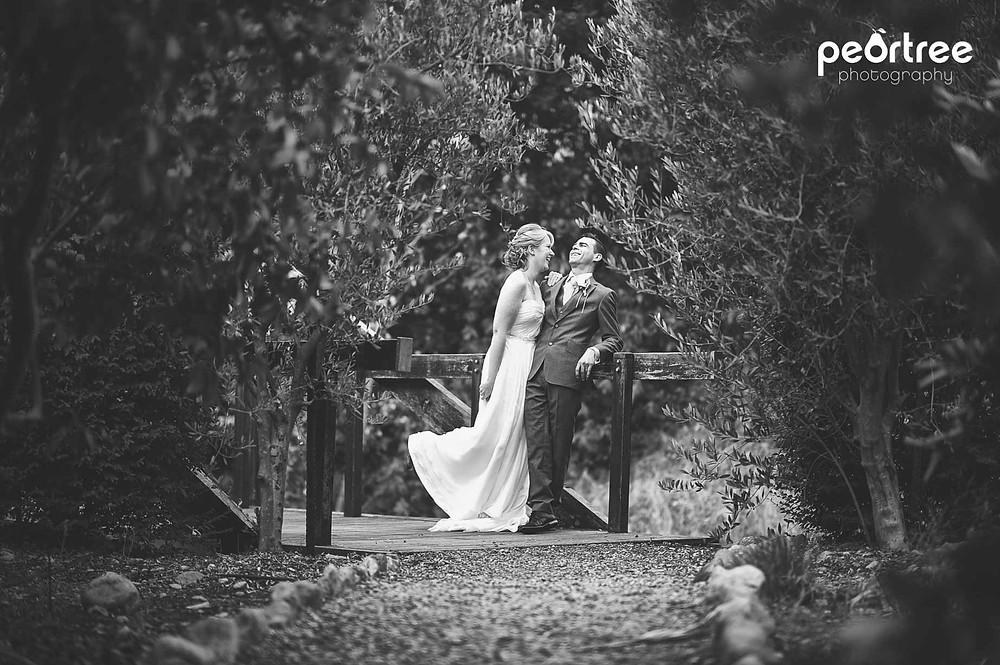 wedding franschhoek holdenmanz_65