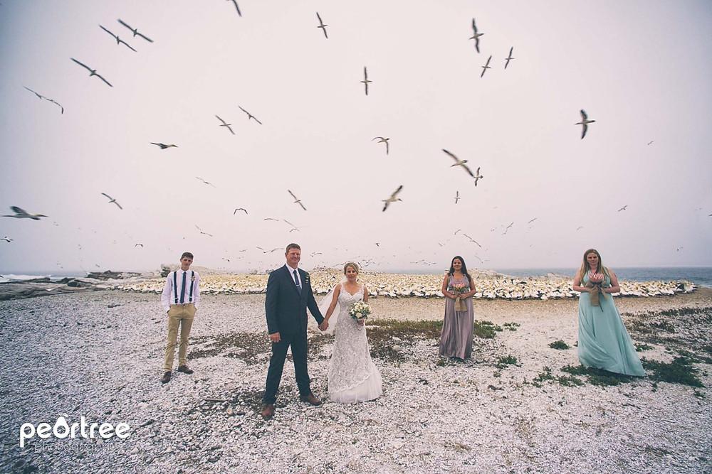 westcoast-wedding-lambertsbay_45
