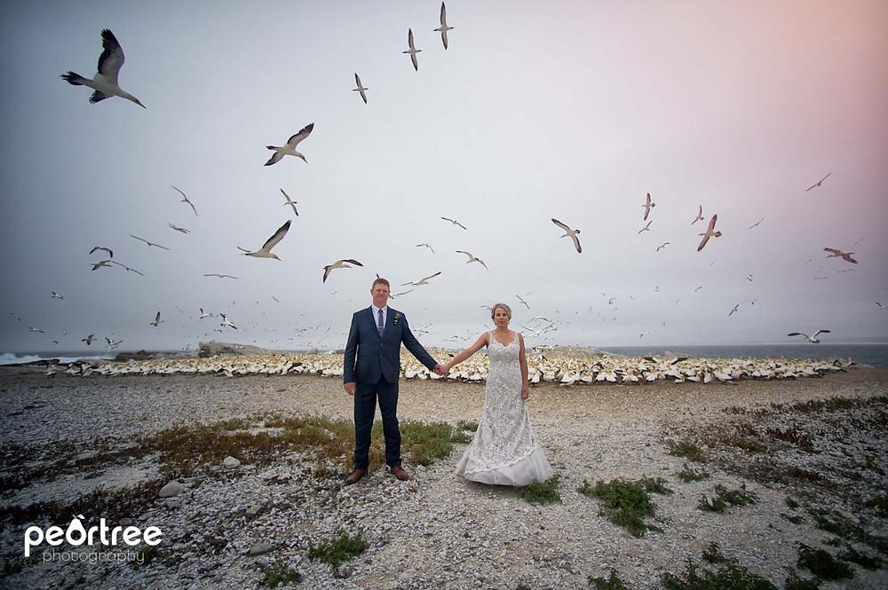 westcoast-wedding-lambertsbay_47