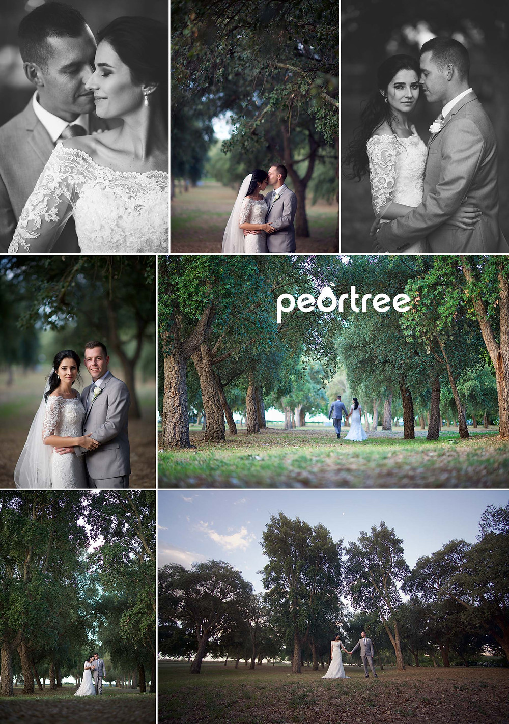 boschendal wedding 16