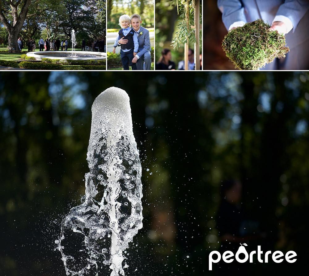 autumn stellenbosch wedding molenvliet estate