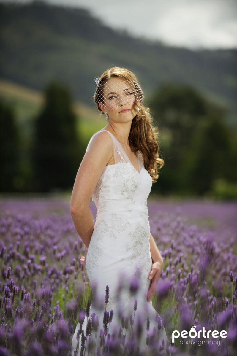 Dieu Donne Top Weddings_18