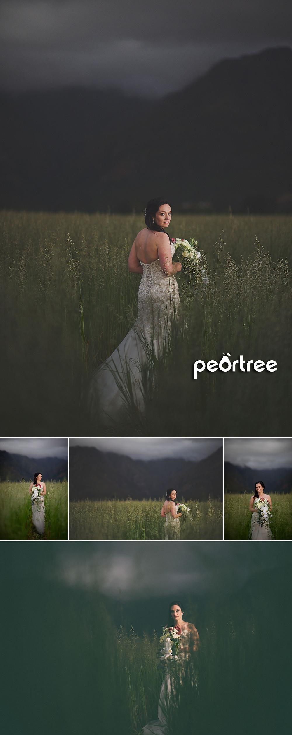 wedding-stellenrust-stellenbosch-24
