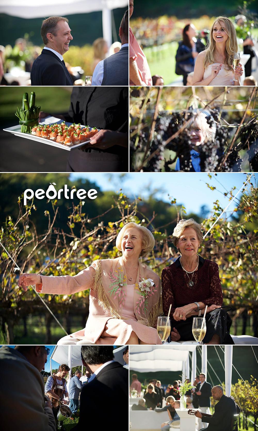 autumn stellenbosch wedding molenvliet estate 17