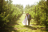 cape-town-wedding-photographer.jpg