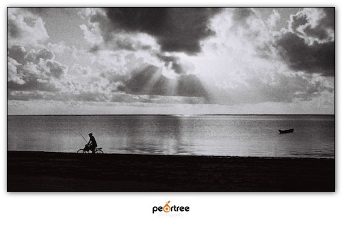 Zanzibar Stone Town Photography