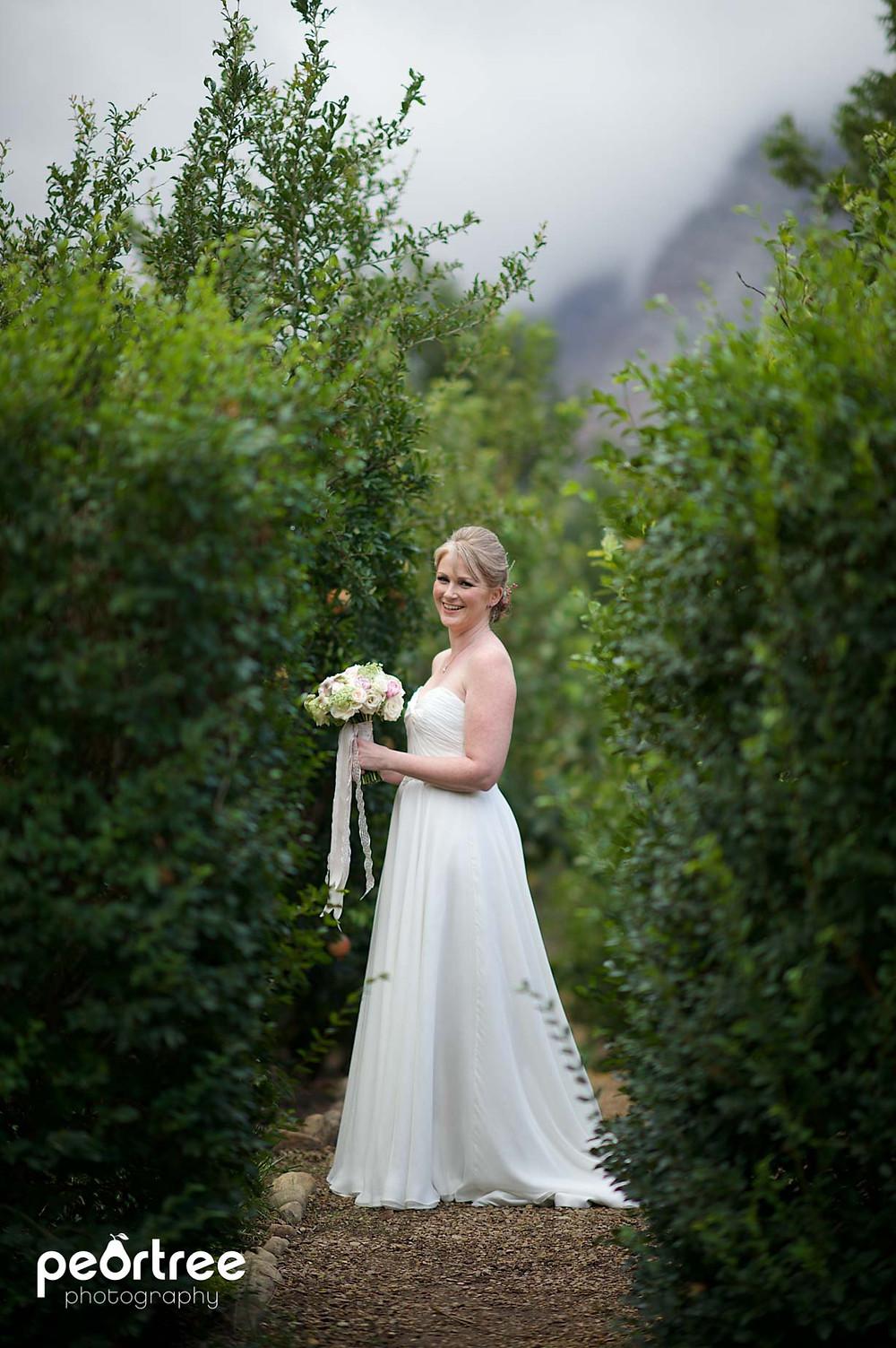 wedding franschhoek holdenmanz_20