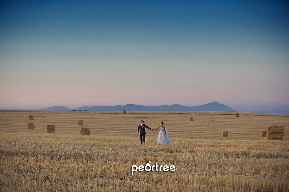 Allesverloren Wedding Riebeeck Valley