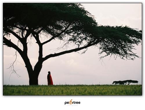 Nakuru Kenya Masai Photography (2)