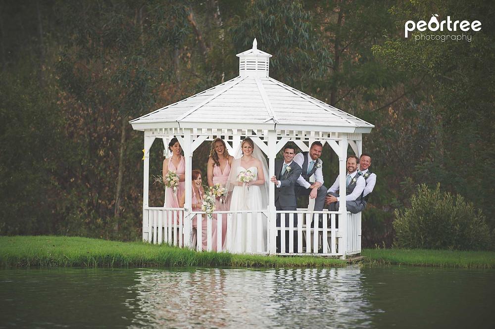 wedding franschhoek holdenmanz_46