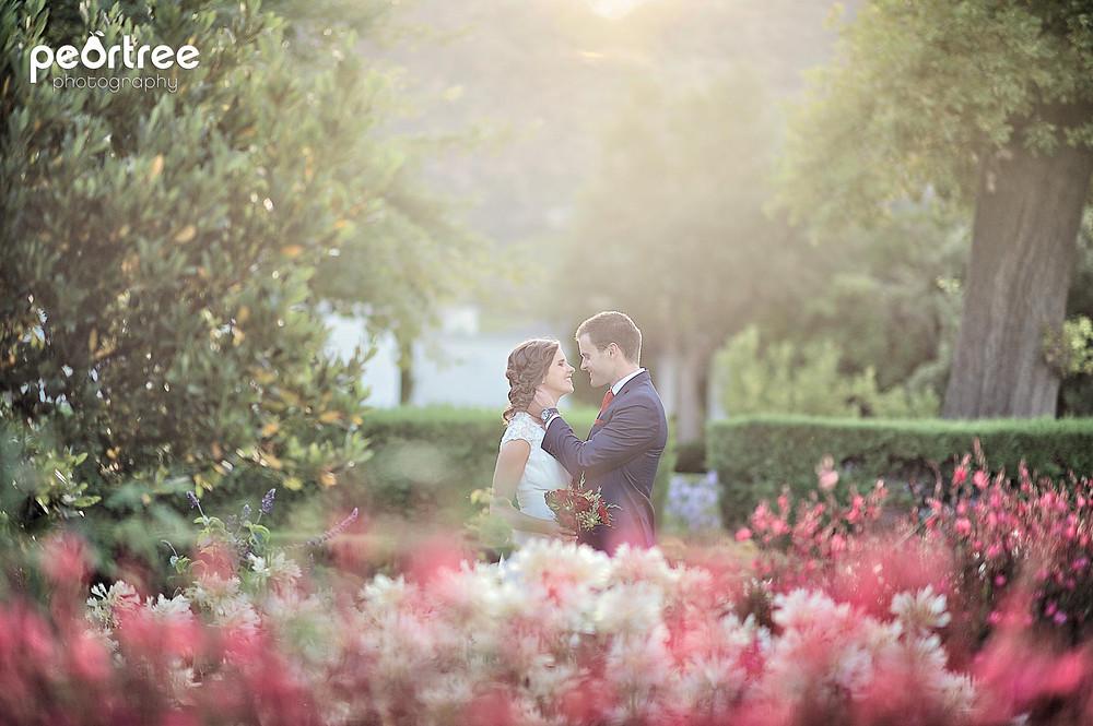 Wedding Steenberg Estate