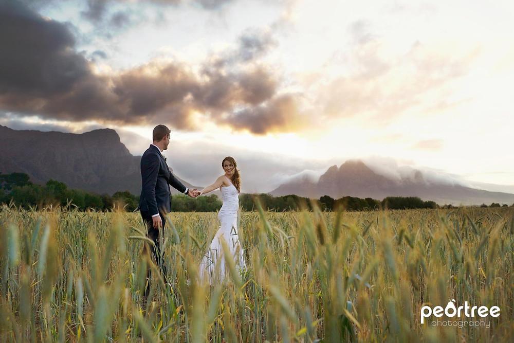 Dieu Donne Top Weddings_58