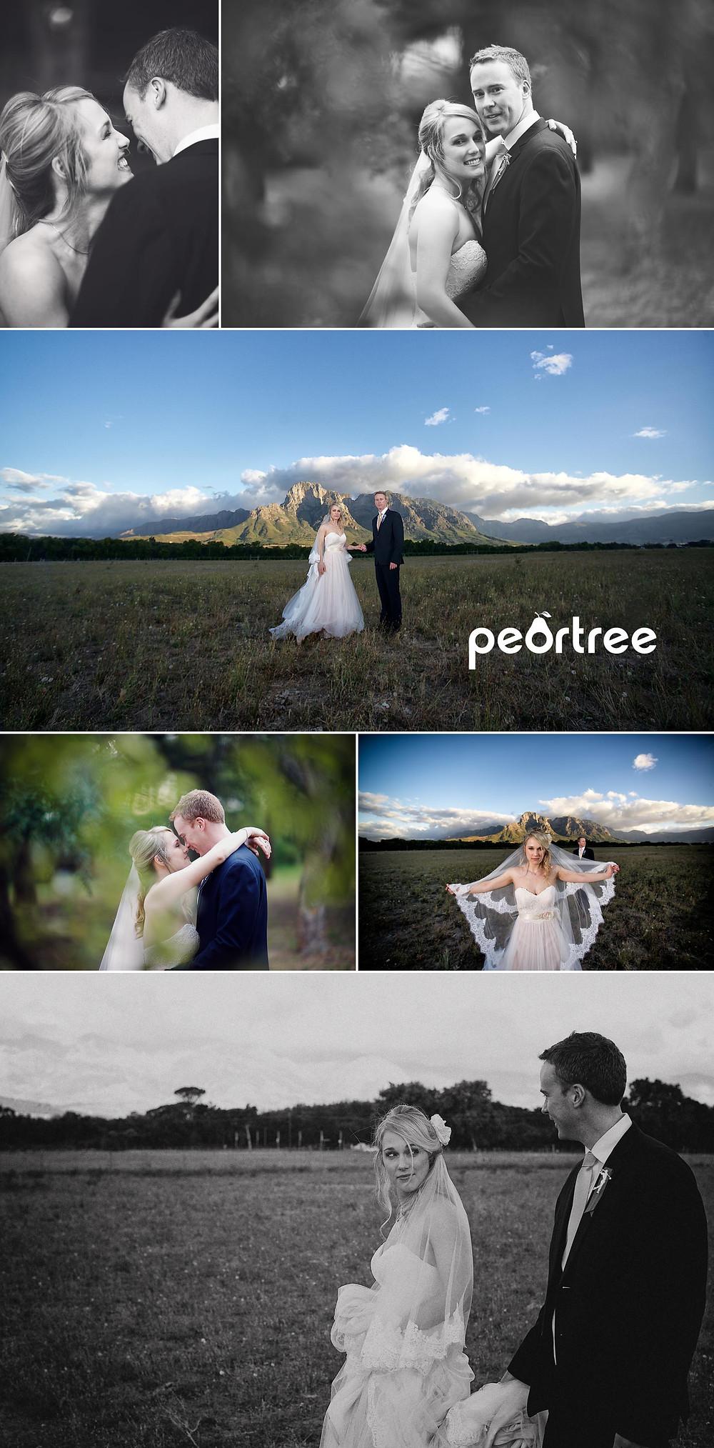 the olive press boschendal wedding 15