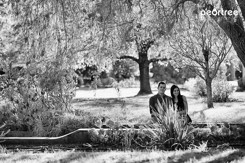 stellenbosch photography