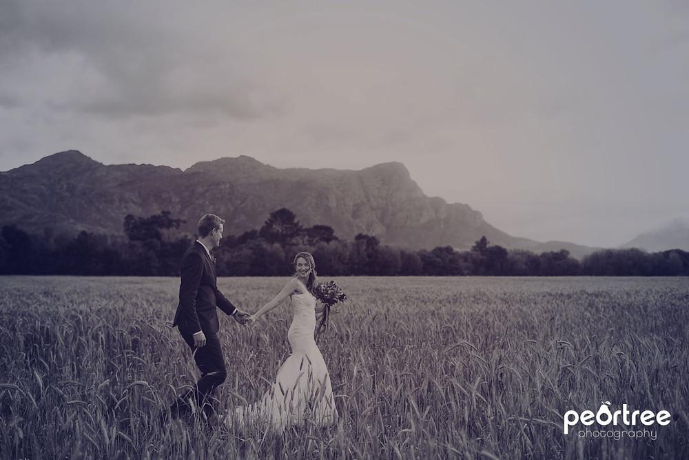 Dieu Donne Top Weddings_56