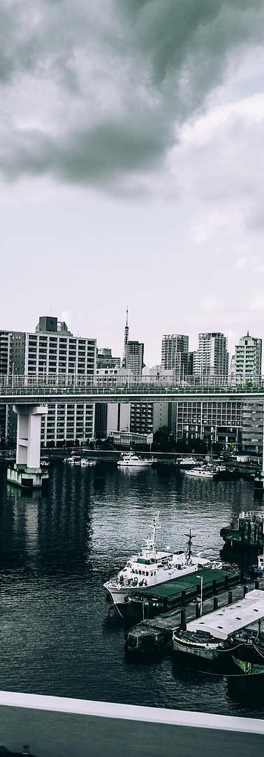 gloomy bridges.jpg