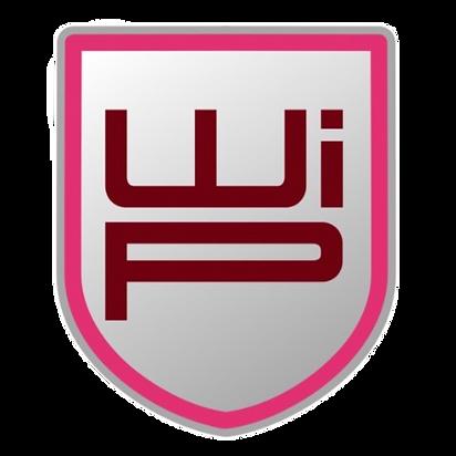 WIP6.png