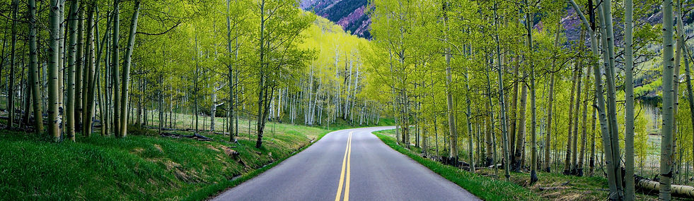 Aspen Fields in Aspen.2.jpg