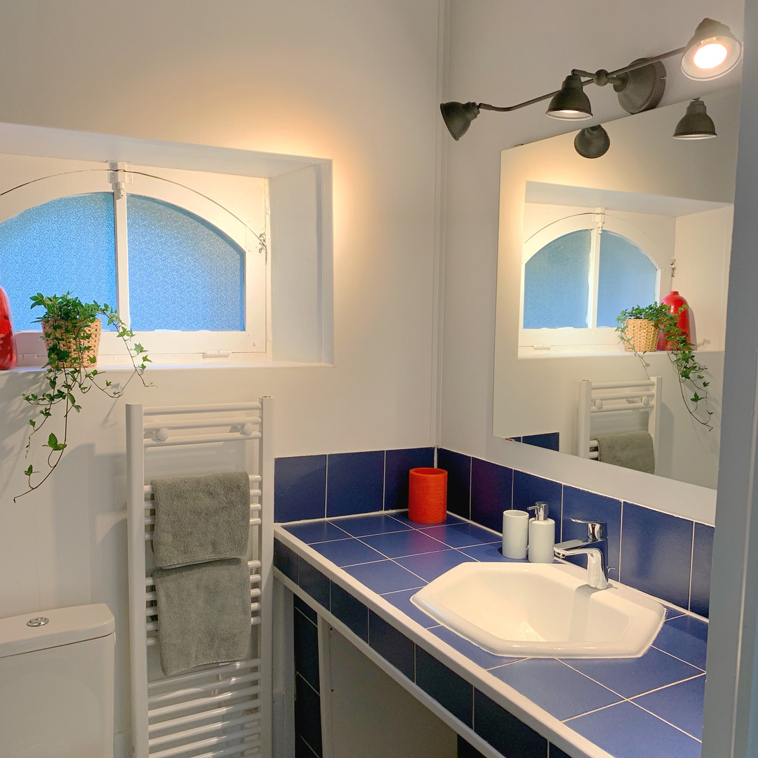 Salle de bain (rdj)