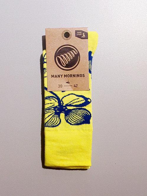 """Many Mornings - """"Light Flower"""""""