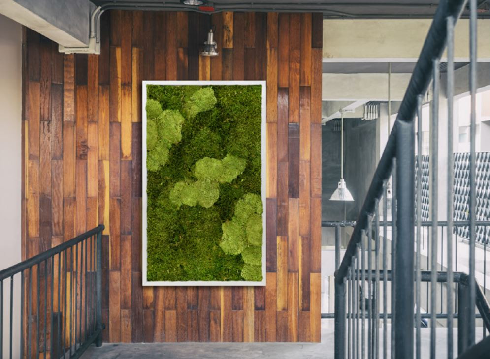 Moss wall panels in texture combination