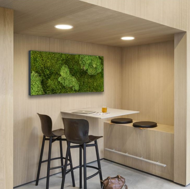 Kitchen Moss Wall Panels