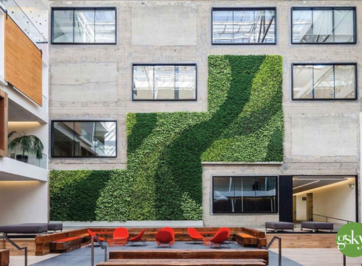 Smart Exterior Green Wall Design for your Business and Community