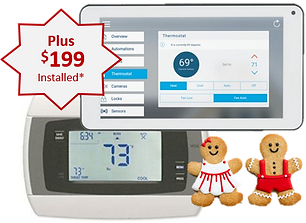 smart thermostat ginger.png