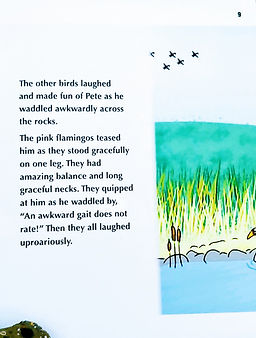 Pete and the Flamingos story (picture).j