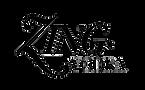Zing Logo 2.png