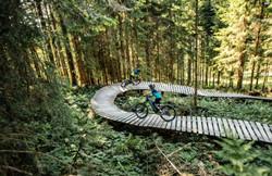 thumb01-Mountainbike-und-Trail-in-St