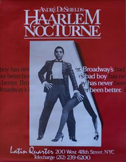 Haarlem Nocturne (1984)
