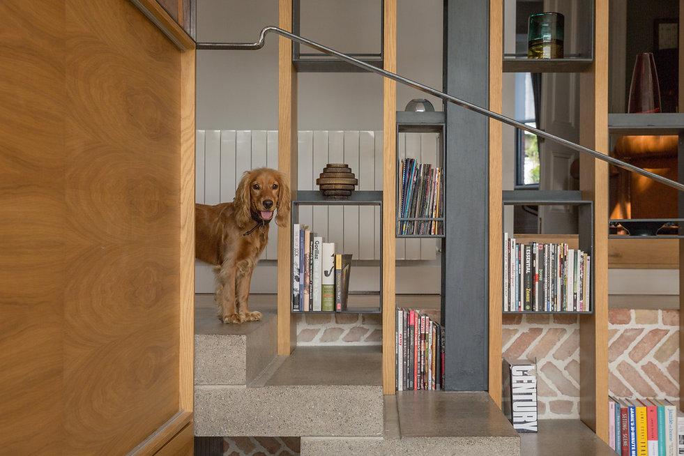Dog concrete steps book shelf