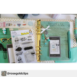 Looooving this picture of _rosegoldclips , thanks for sharing!
