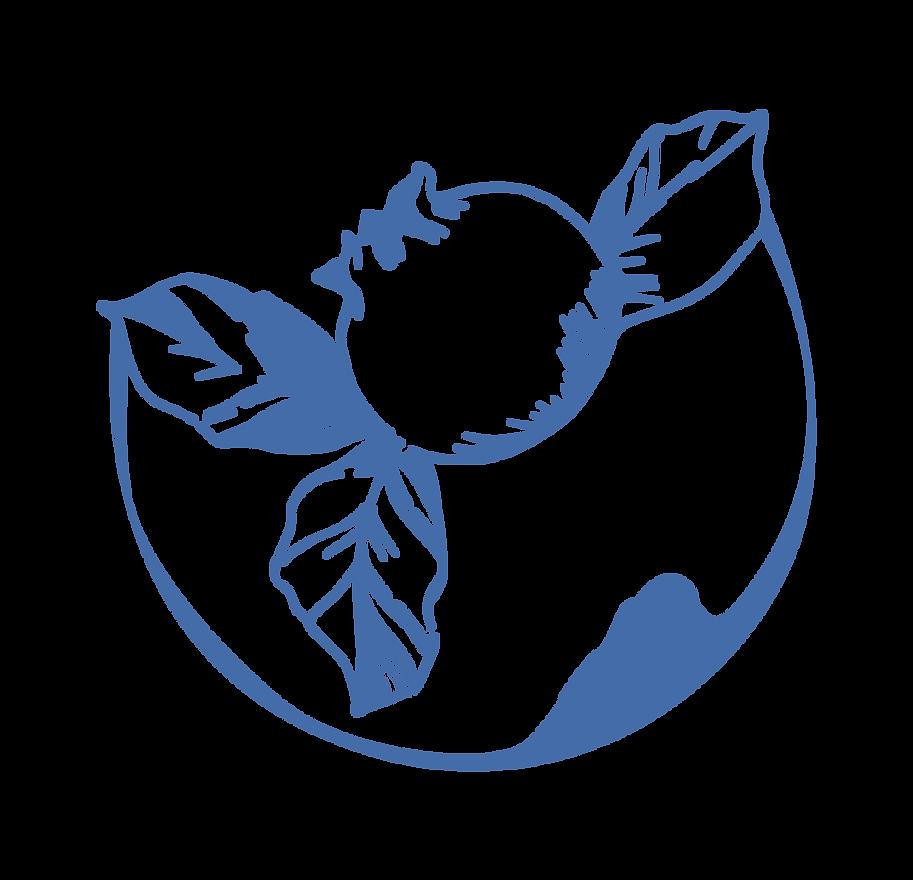 Elemento Cuencoa azul-15.png