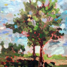 Prairie Outpost Trees.jpg